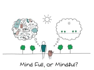 Mind Full of Mindful?